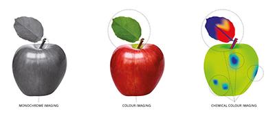 Perception Park Hyperspektrale Bildverarbeitung am Beispiel des Apfels